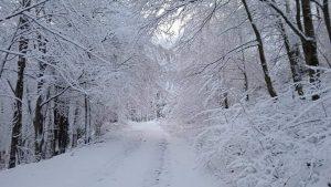 Snijeg za vikend: Meteorolozi najavljuju pad temperature i snijeg