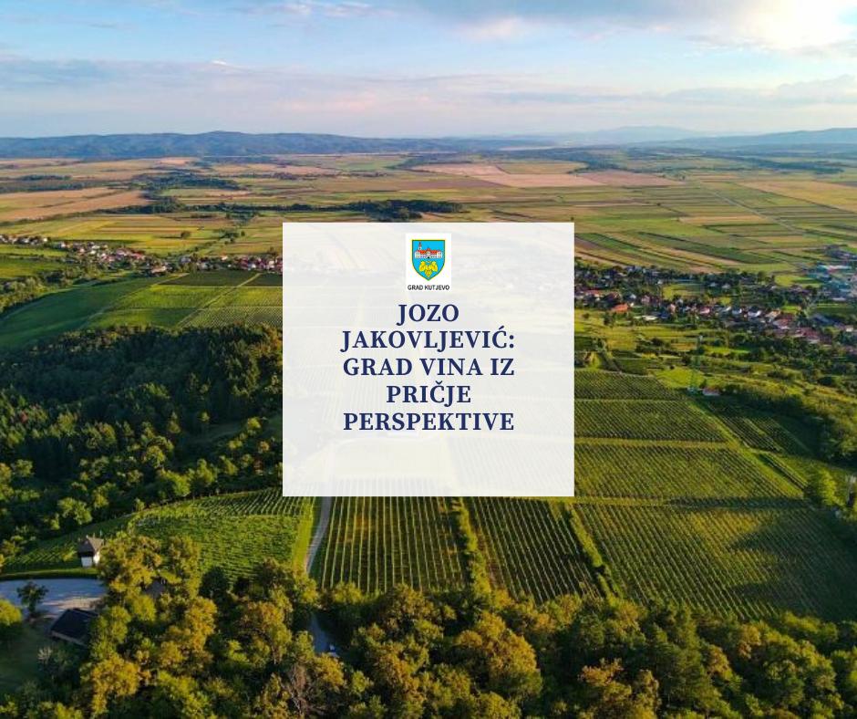 Jozo Jakovljević: Grad vina iz ptičje perspektive