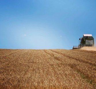 Natječaj za izbor najboljeg mladog poljoprivrednika/poljoprivrednice u Hrvatskoj