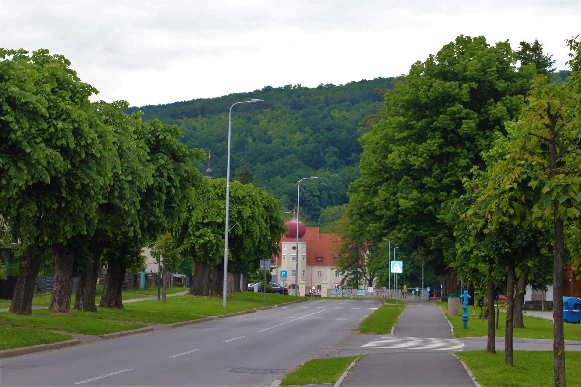 O Kutjevu