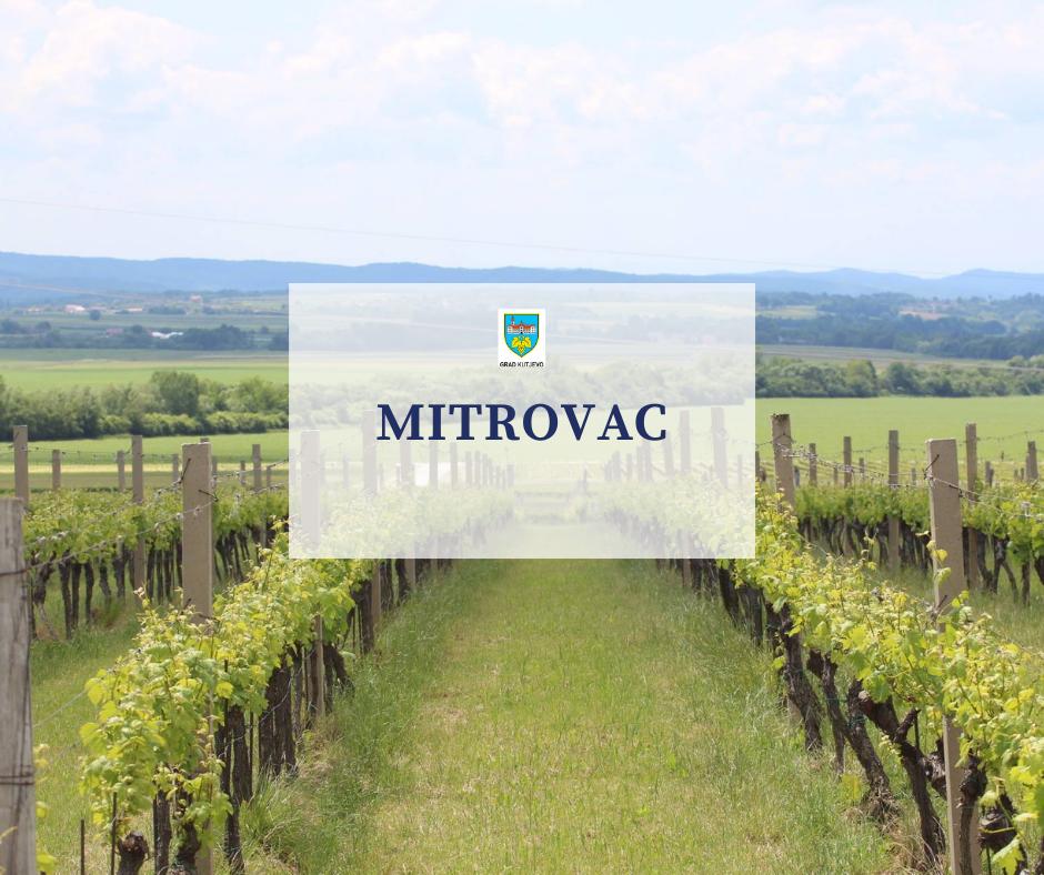Mitrovac