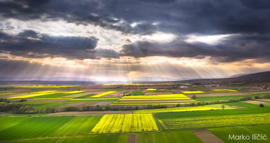 Obavijest Ministarstva poljoprivrede o prodaji izravnom pogodbom
