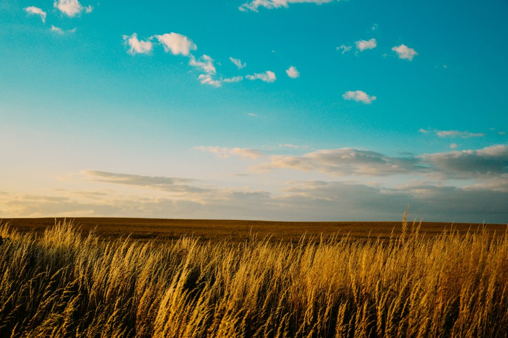 Obavijest o prodaji izravnom pogodbom državnog poljoprivrednog zemljišta