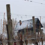 vikendica u vinogorju Kutjevo