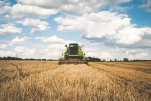 Natječaj za EU projekt: Obnova poljoprivrednog zemljišta i proizvodnog potencijala