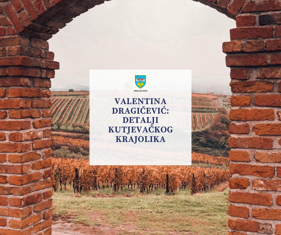 Valentina Dragičević: Detalji kutjevačkog krajolika