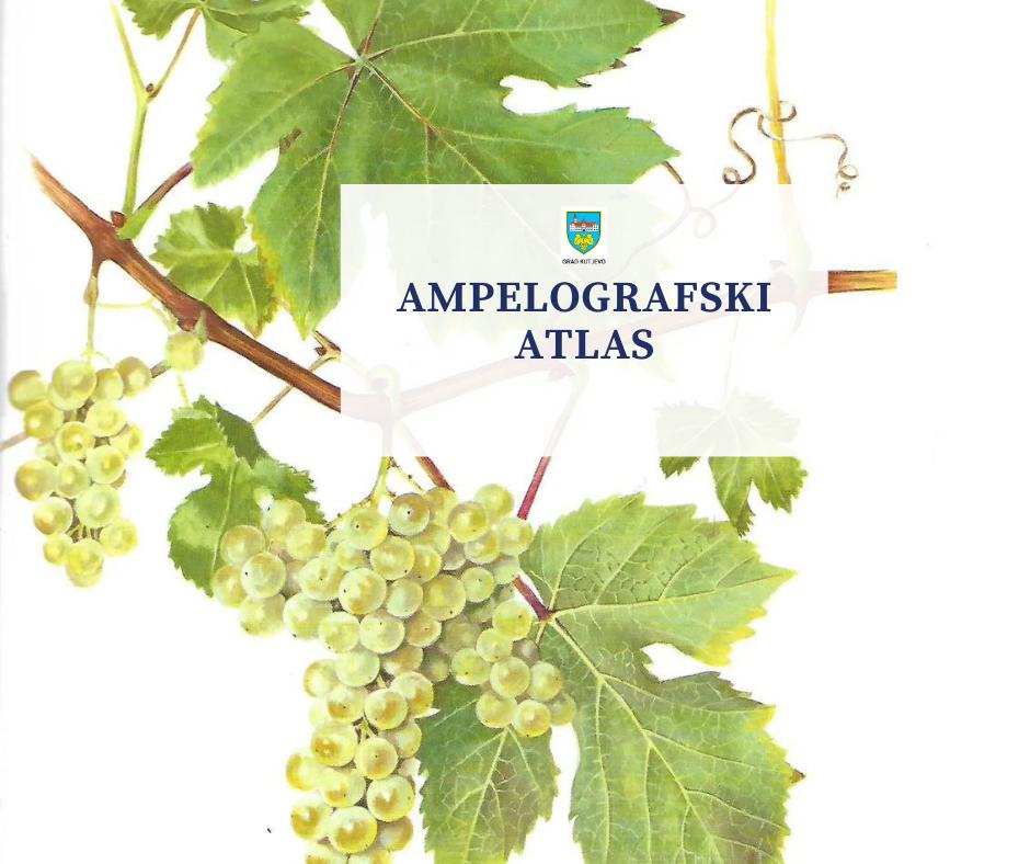 Ampelografski atlas Zdenka Turkovića sadrži 60 sorti grožđa u tehnici akvarela Grete Turković
