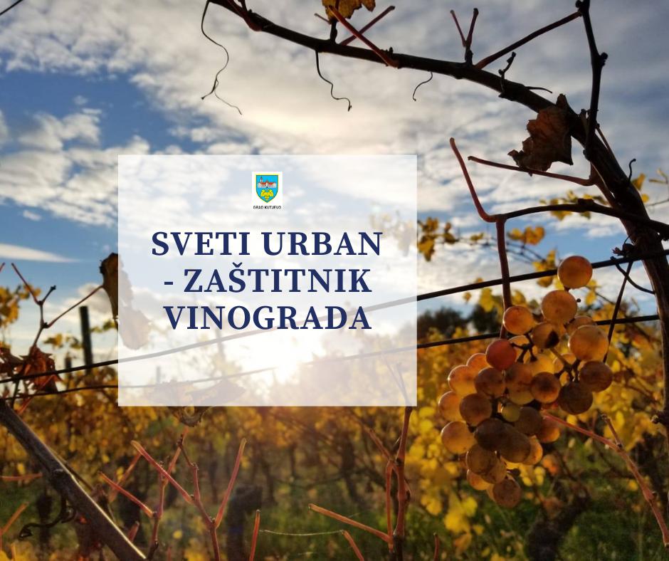 Sveti Urban (Vrban) – zaštitnik vinograda u mjesecu svibnju